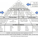 Exercise Food Pyramid