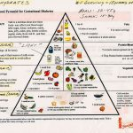 Food Pyramid Gestational Diabetes