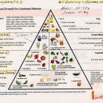 Food Pyramid Gestational Diabetes