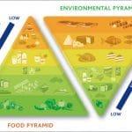 Italian Food Pyramid