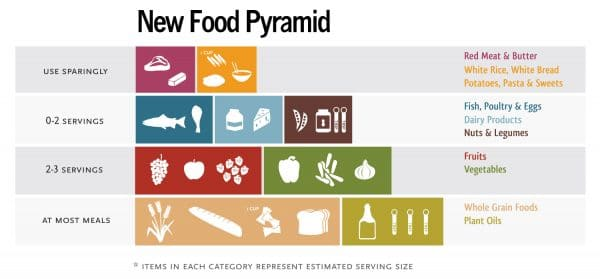 Free New Food Pyramid