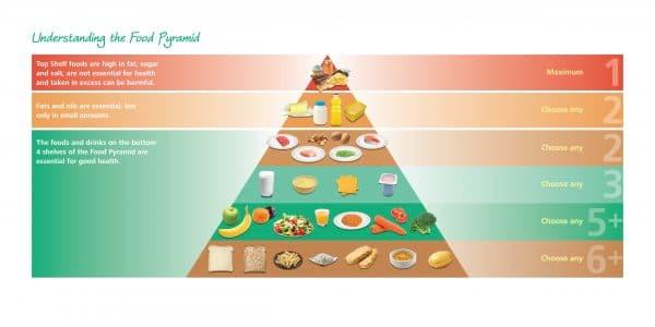 Whole Food Pyramid